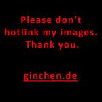 Ich sehe was, was Du nicht siehst …   Ginchens Blog